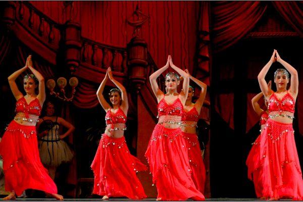 Spring Ballet Photos #11