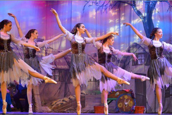 Spring Ballet Photos #12